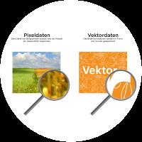 info_pixel-vektro_d